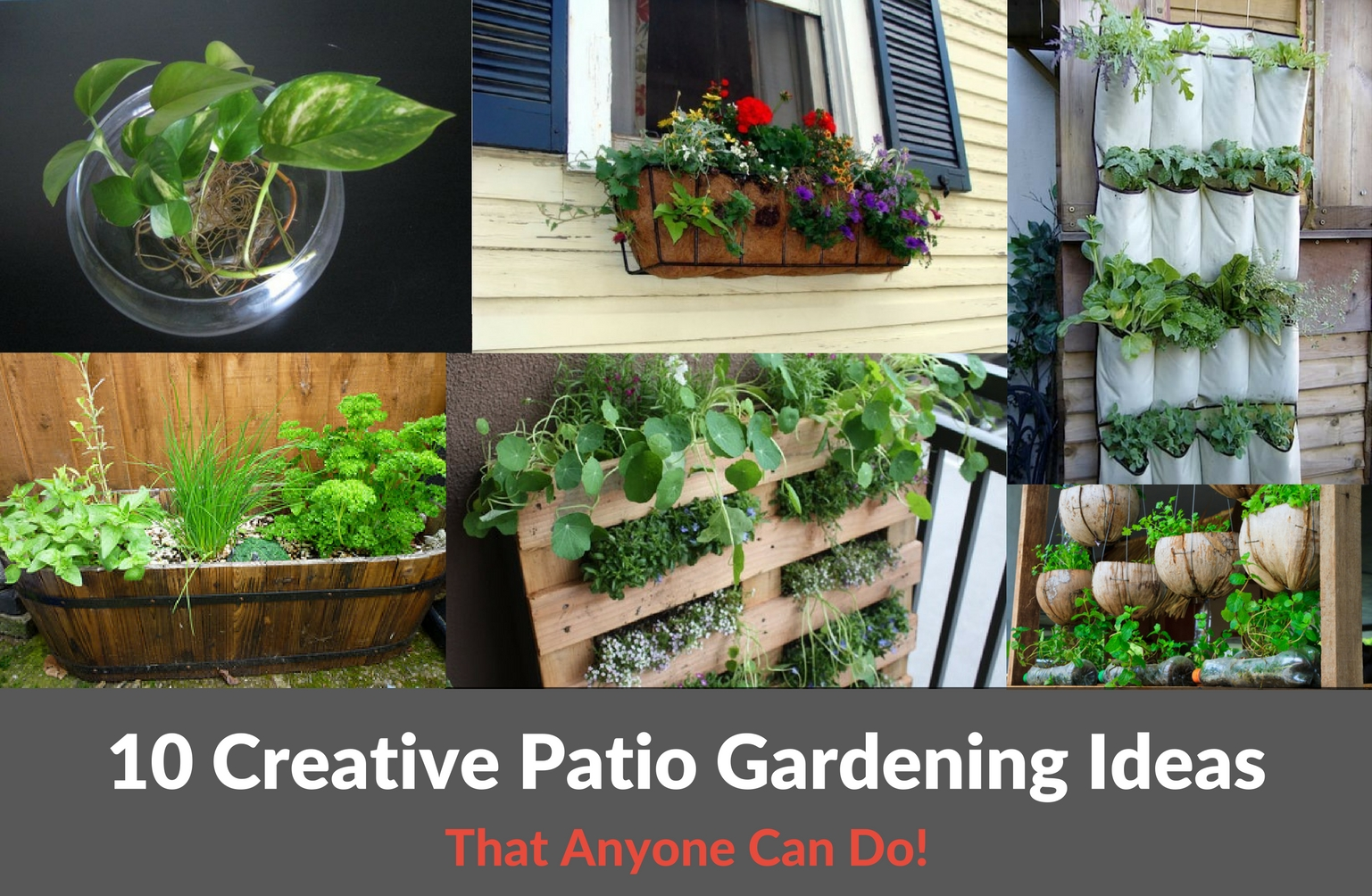 10 Creative Patio Gardening Ideas - 10 Creative Patio Gardening Ideas :: YardYum - Garden Plot Rentals
