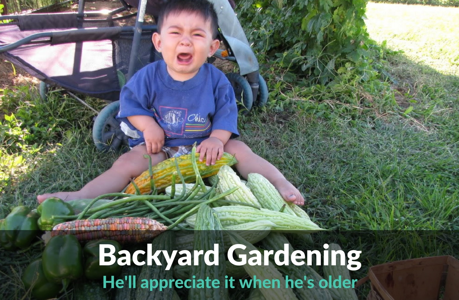 Backyard Gardening - You Can Do It!
