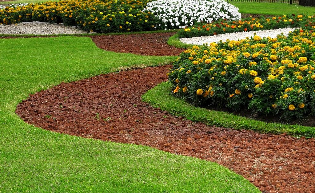 How to Create Beautiful Lawn with Minimum Effort