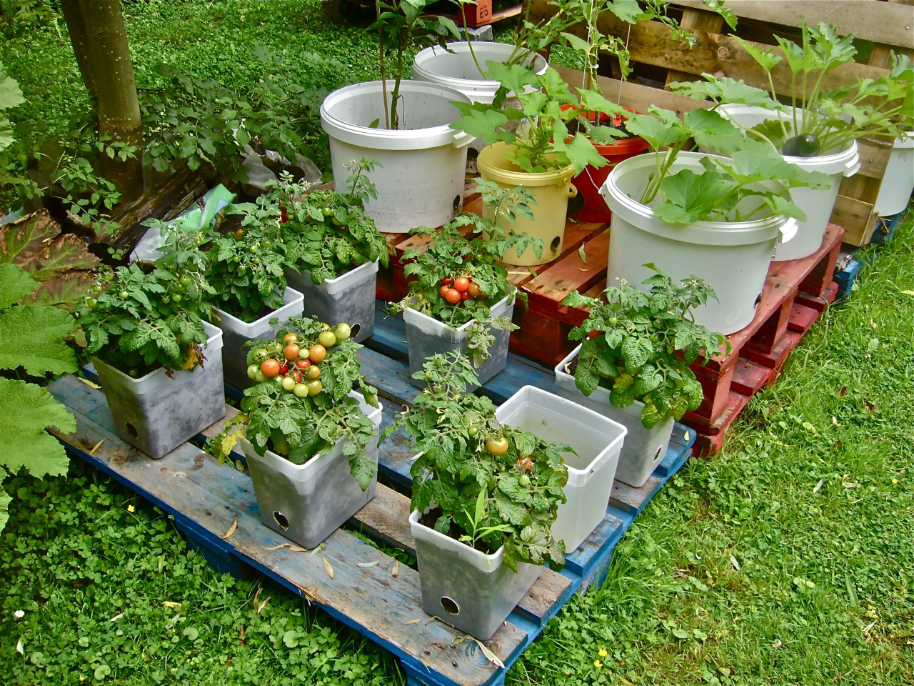 10 Tips for Container Farming