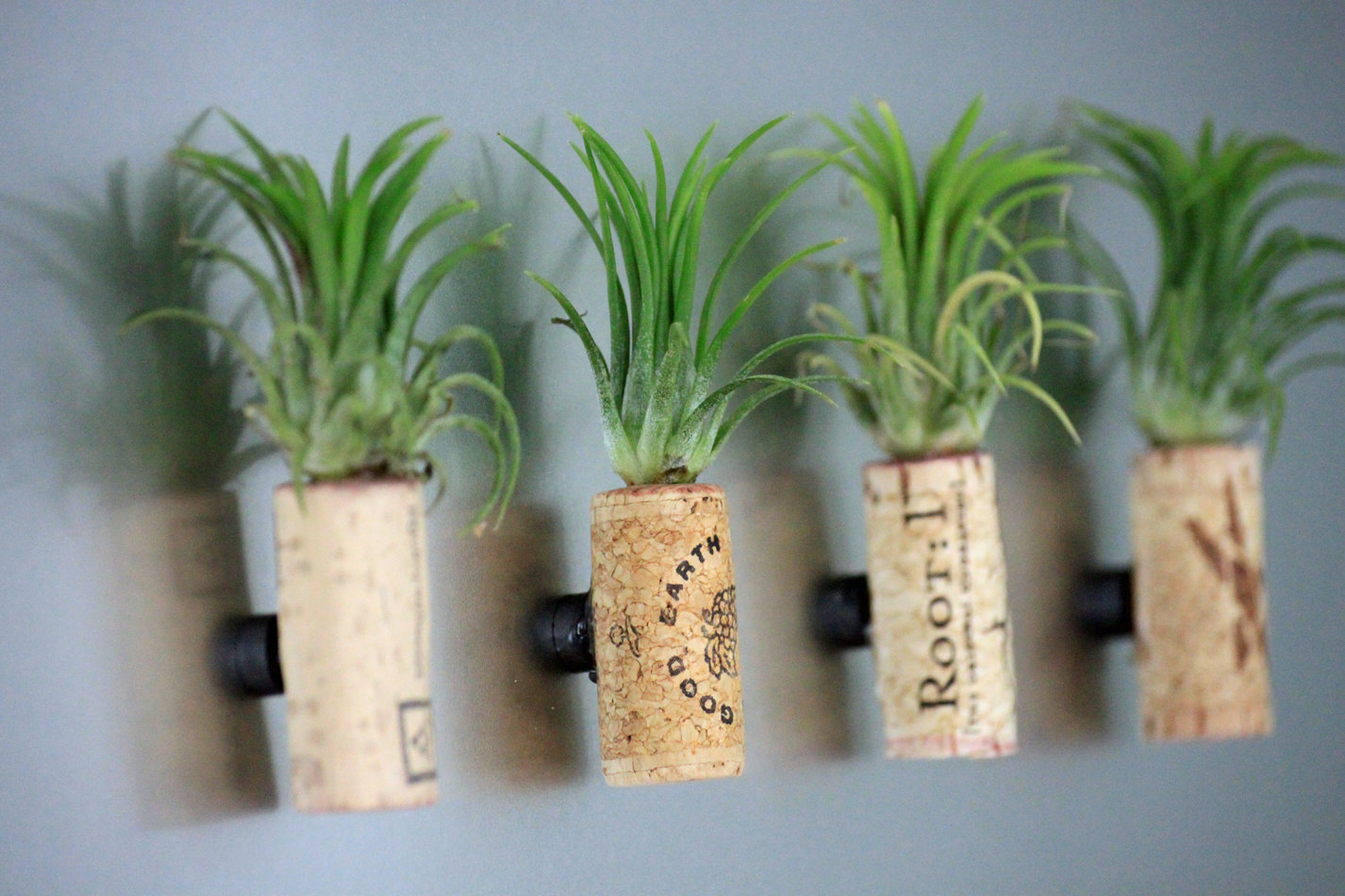 Cork Airplant Magnets