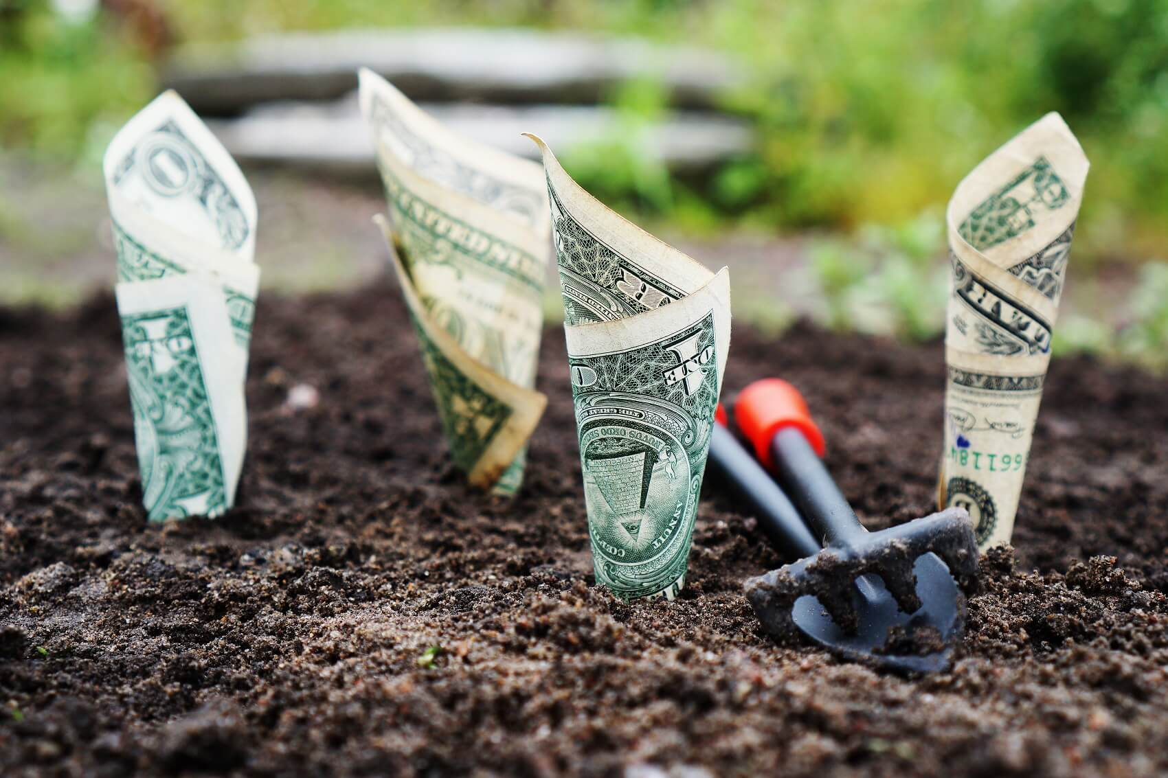 Need Financing for Garden Improvements?