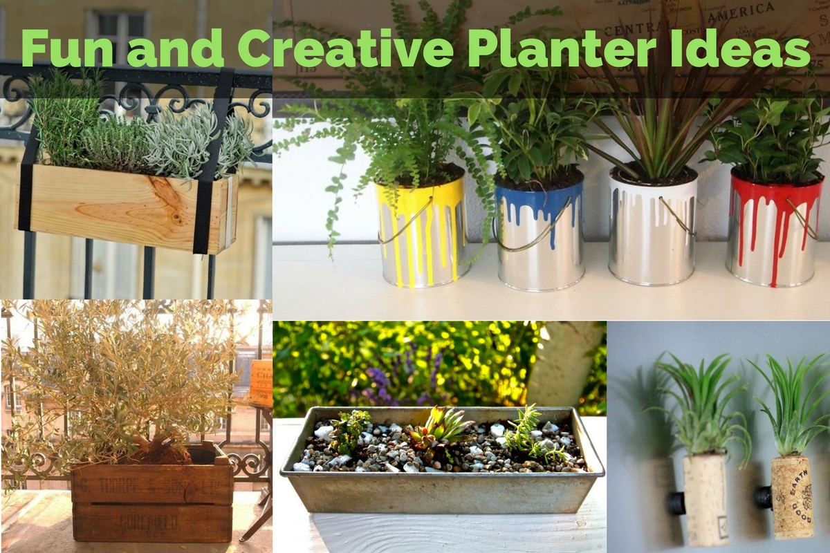 Fun and Creative Planter Ideas