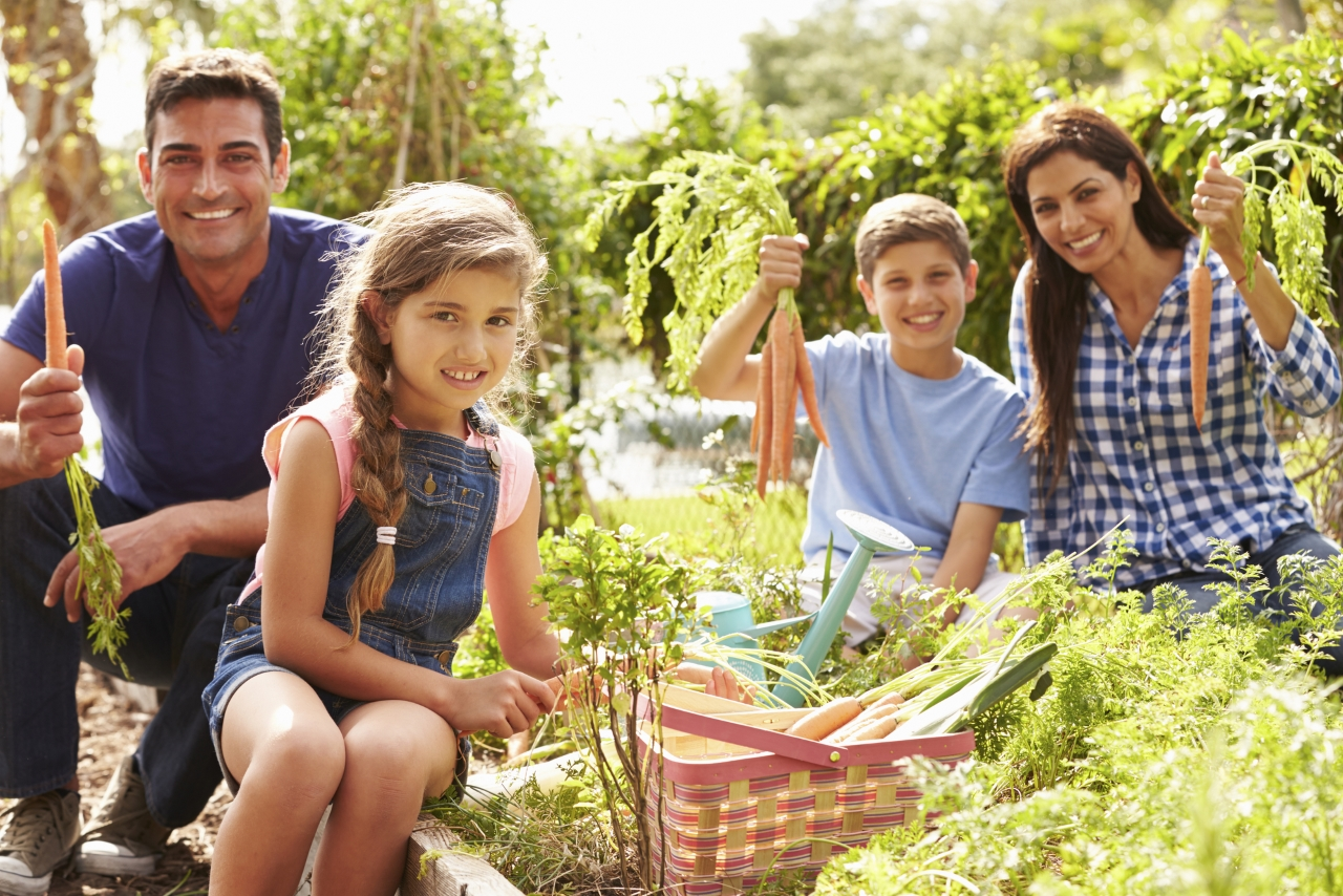 Top 5 Gardening Health Benefits