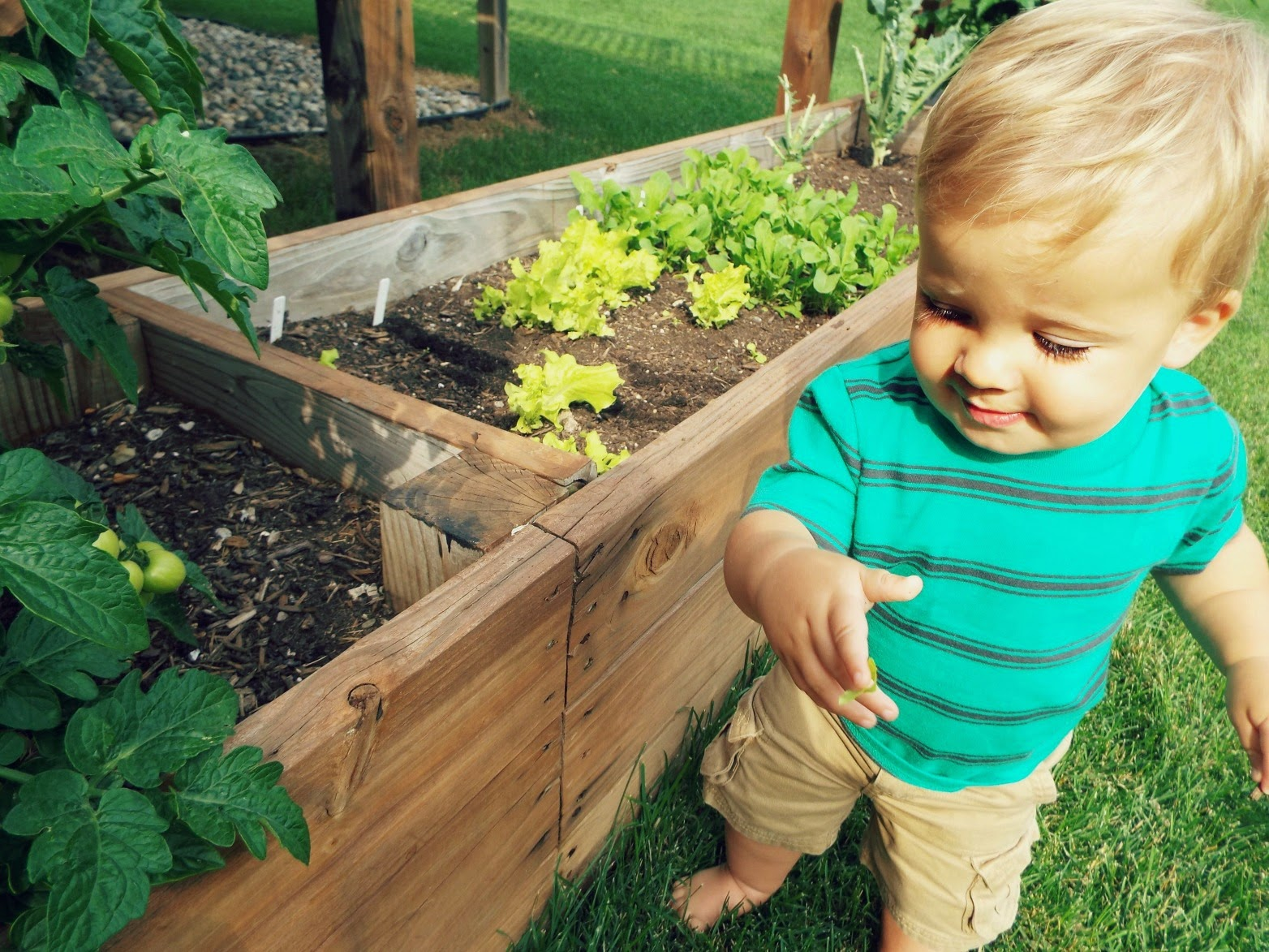 Gardening with Your Baby: 10 Things You Need to Know
