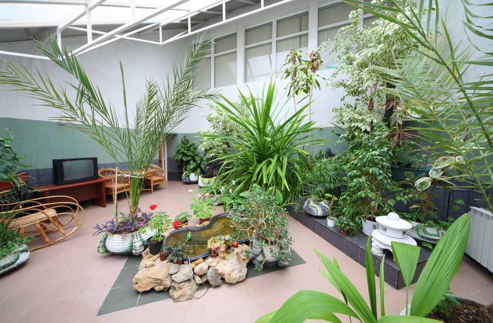 How To Create A Beautiful Indoor Garden and Keep It Clean