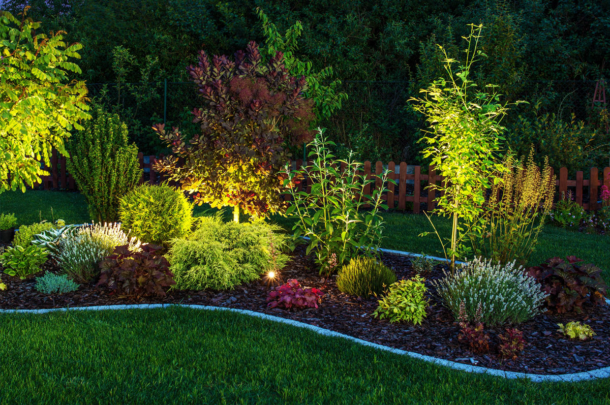 Landscape Lighting Tips For Beautiful Gardens and Drives