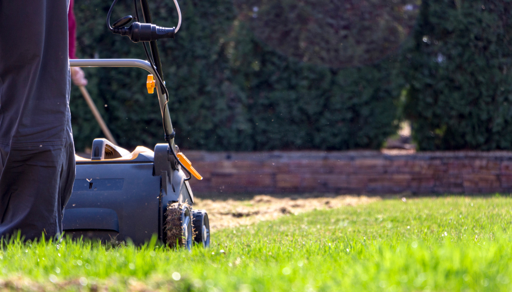 What Is A Lawn Scarifier & Why & How To Use One