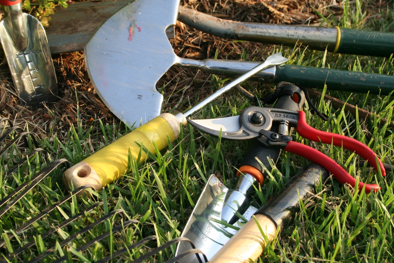 10 Must-Have Outdoor Gardening Tools
