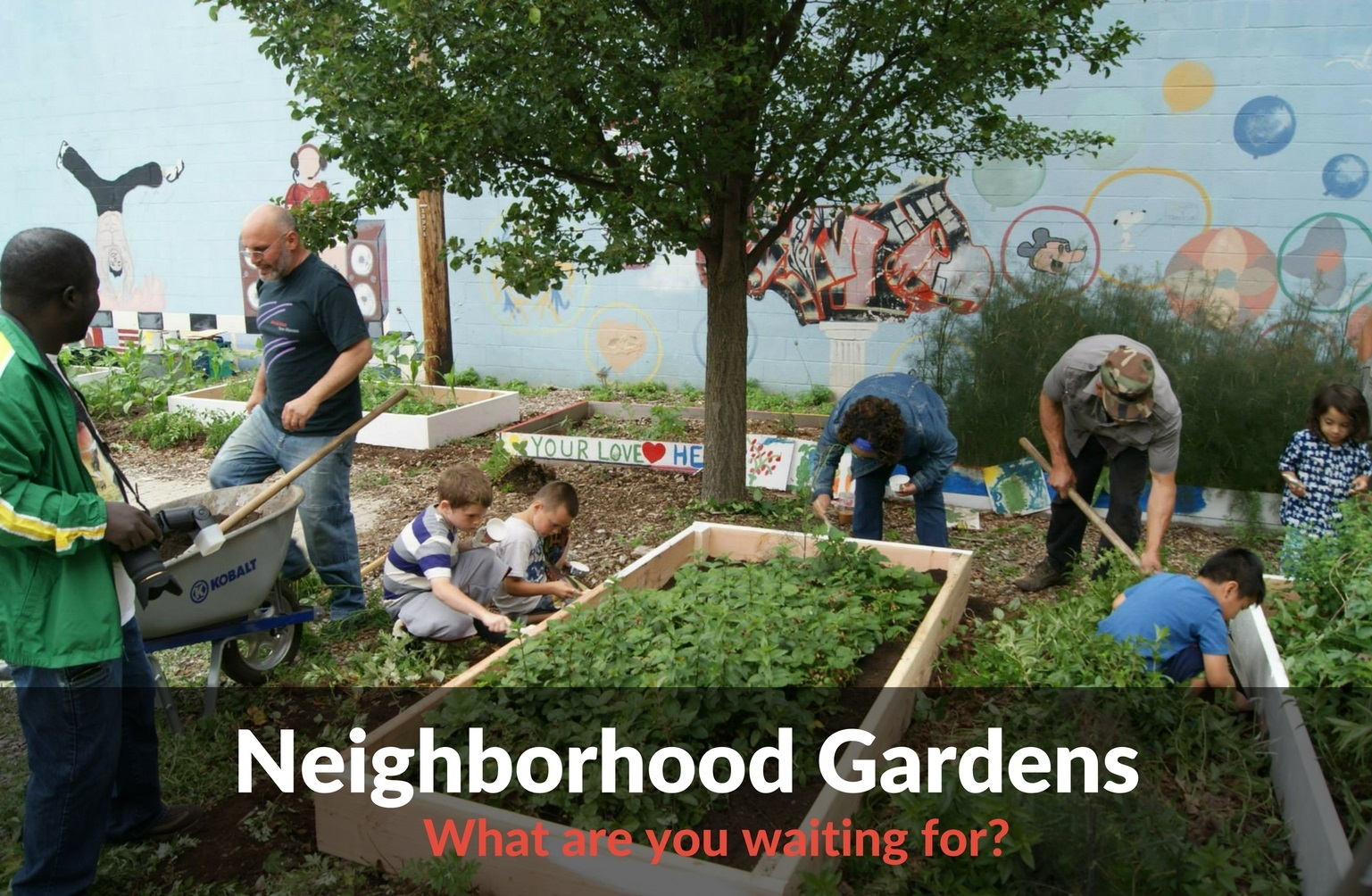 Neighborhood Gardens - What Are You Waiting For?
