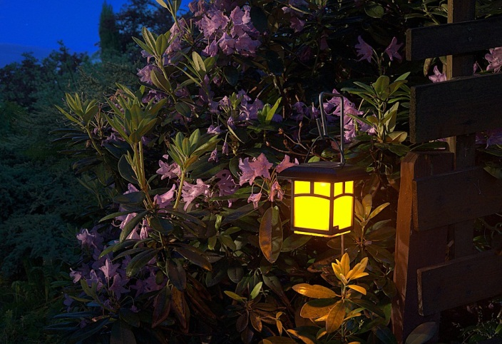 Does Landscape Lighting Affect Plant Growth?