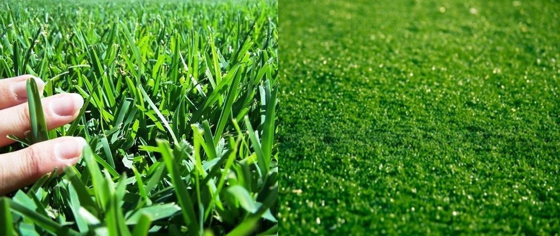 Real Grass vs. Artificial Turf Installations