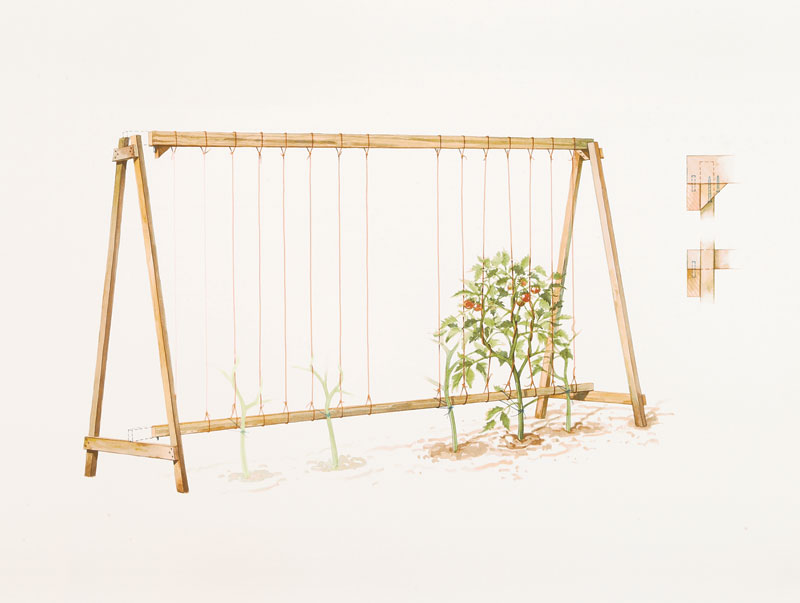How To Make a Tomato Cage :: YardYum - Garden Plot Rentals