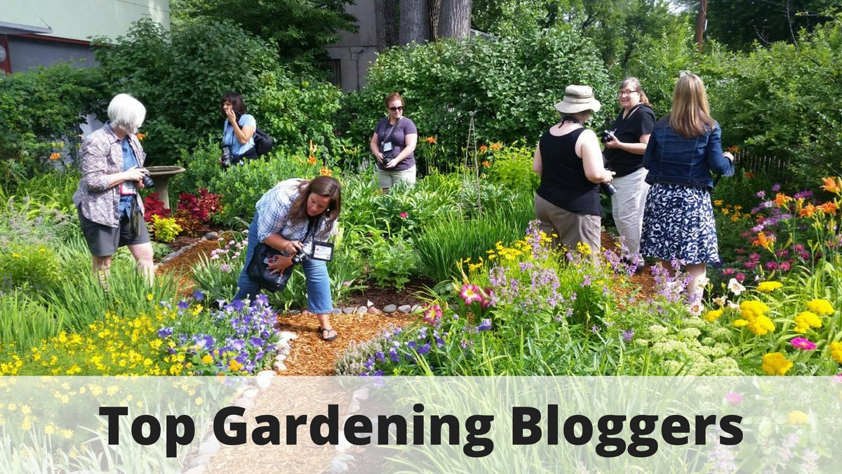 Top Gardening Bloggers To Follow