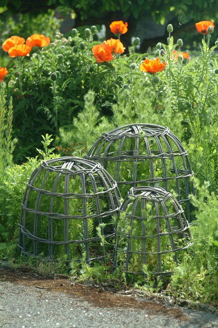 wicker plant enclosure