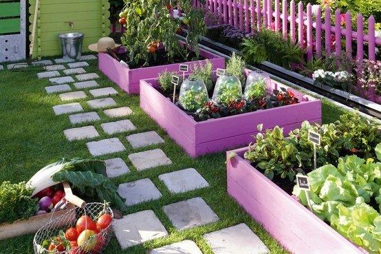 backyard garden 1