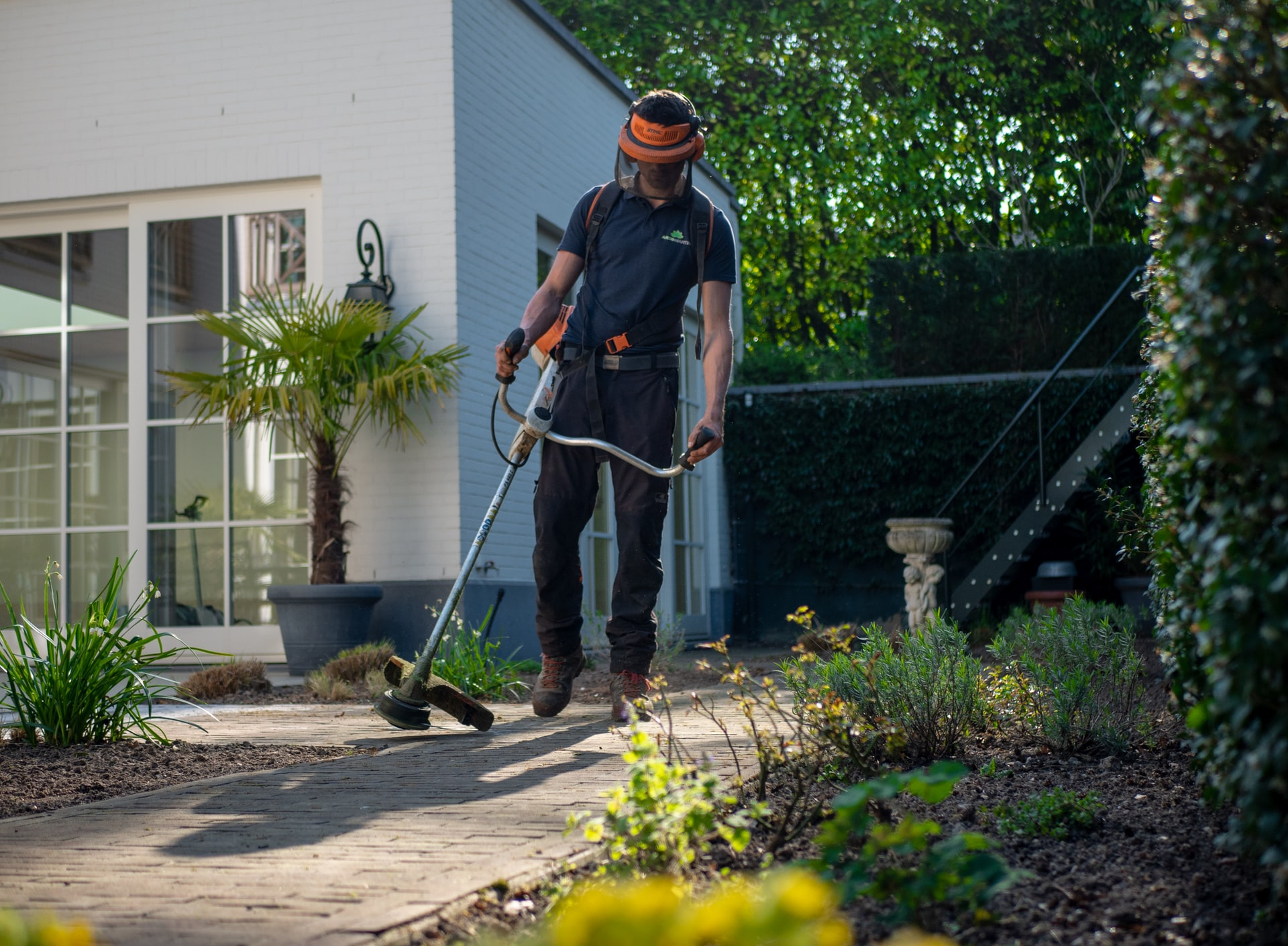Three Places to Look For a Professional Gardener