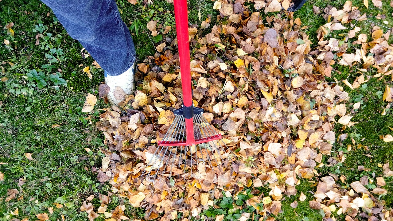 Four Seasons Equals Four Ways to Clean Your Garden