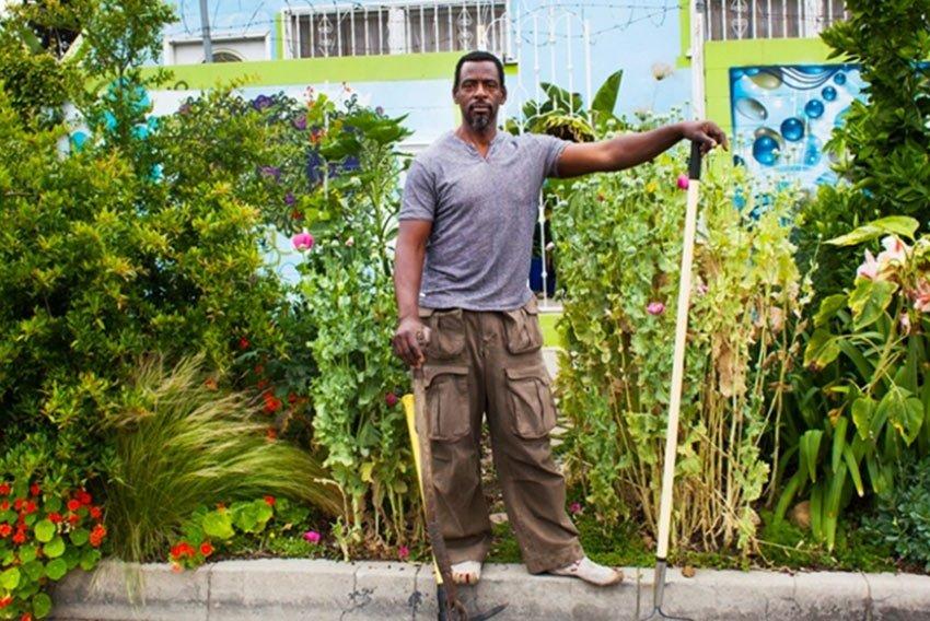 YardYum garden 4