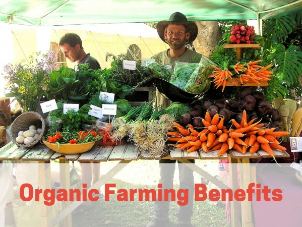 Organic Farming Benefits