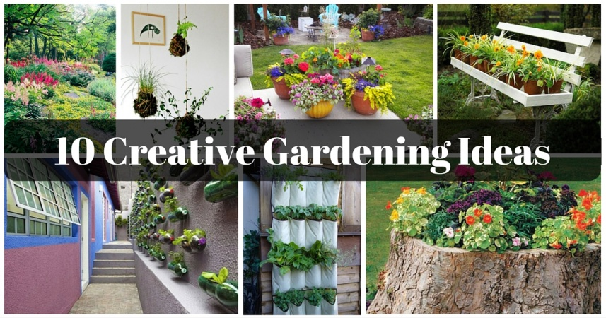 10 Creative Gardening Ideas